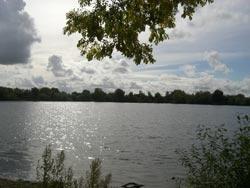 Lake 32 Circencester